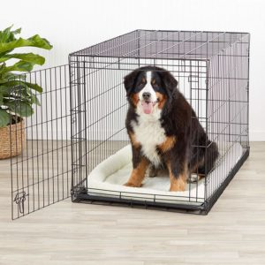 crate for dogs for traveling by car