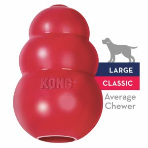 1 of the best toys The Classic Kong