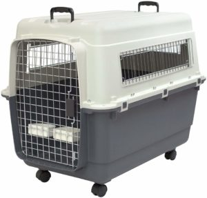 Best travel crate IATA certified XL